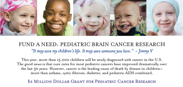 Fund A Need: Pediatric Brain Cancer Research