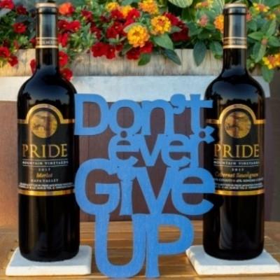 Sonoma Epicurean - Pride Mountain Vineyards